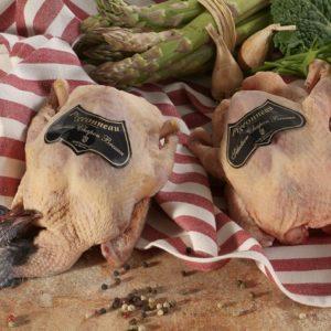 Pigeonneau Sélection Chapon Bressan
